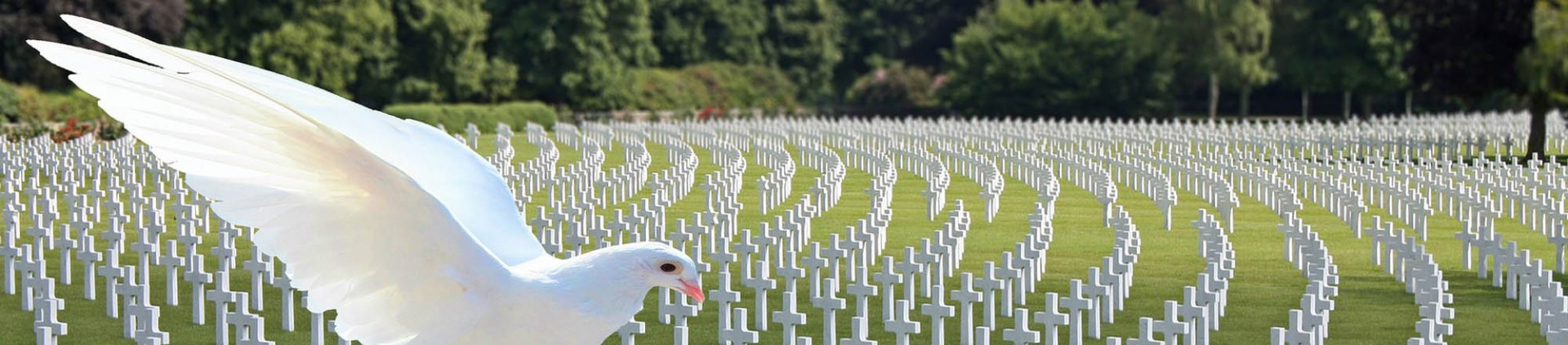 Ardenne Incoming - Votre programme Mémoire