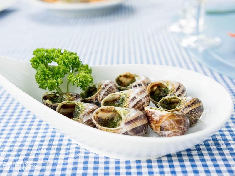 Snails - Chells