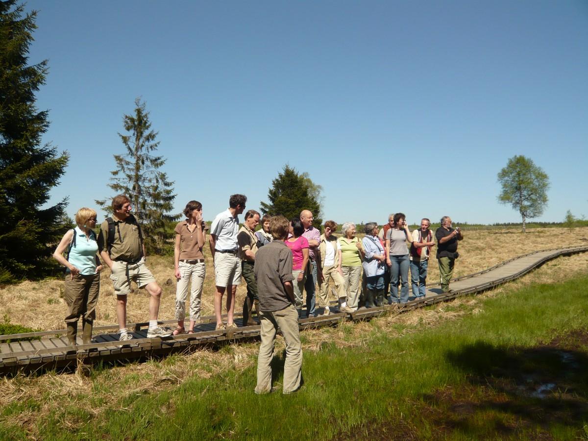 31 - promenade guidees © parc naturel hautes fagnes eifel