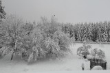 Auberge du Carrefour - Exterior - Winter