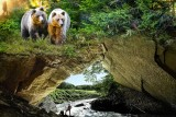 The Caves of Han - Animal park - Cave