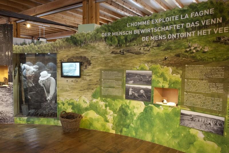 Maison du Parc naturel Hautes-Fagnes Eifel - Expo fania