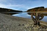 Butgenbach lake