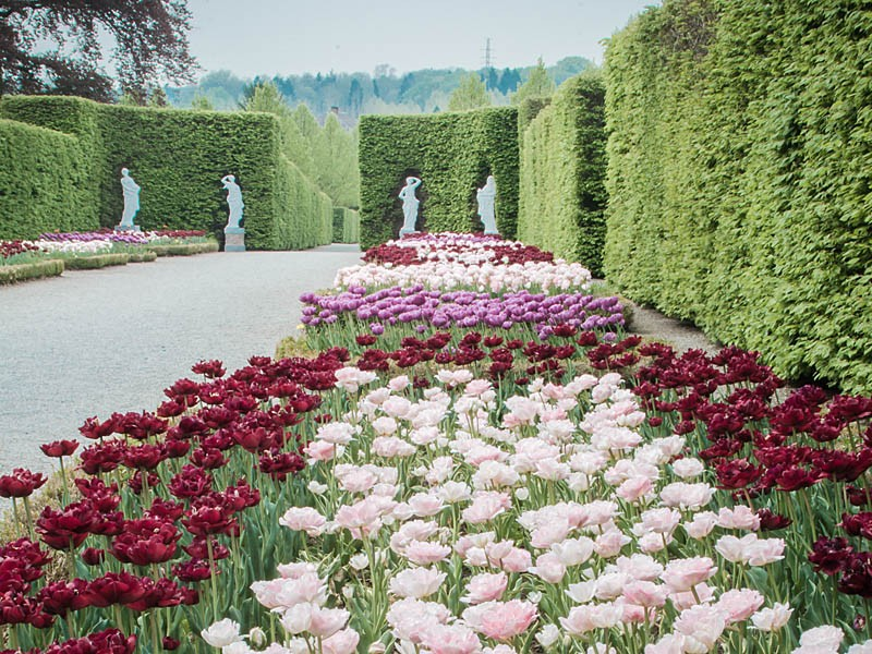 Jardins d'Annevoie - Annevoie-Rouillon